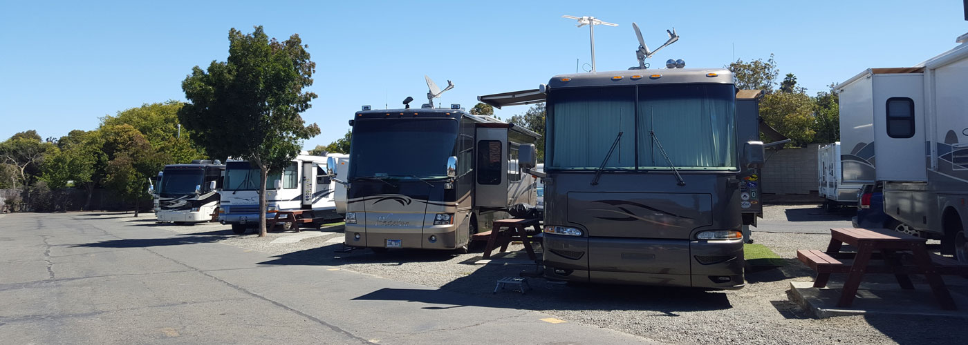rv's lined up